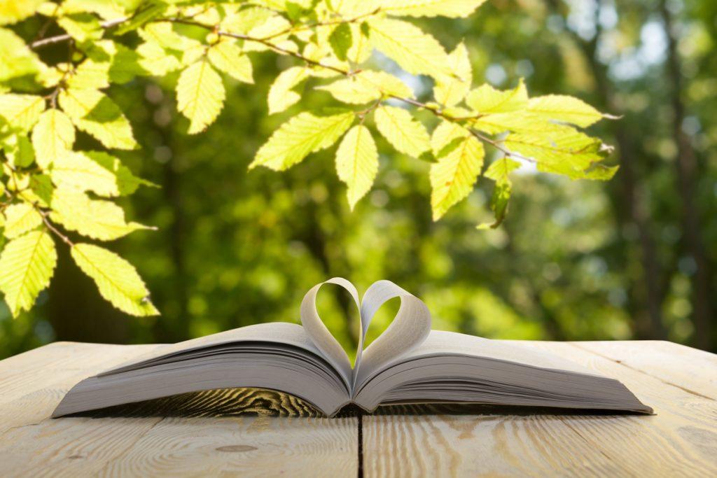 Oppslått bok med sider brettet som hjerte. Etter god leseopplæring kan kjærligheten til bøker bli stor.